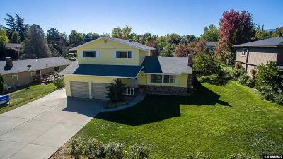 Washoe County Single Family Home For Sale: 315 Carey Hills Dr