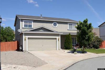 Reno Single Family Home New: 18115 Pasado Ct