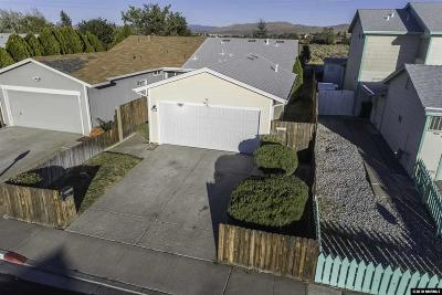Washoe County Single Family Home New: 10060 Zeolite Dr.