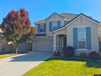 Washoe County Single Family Home For Sale: 9150 Jack Hammer