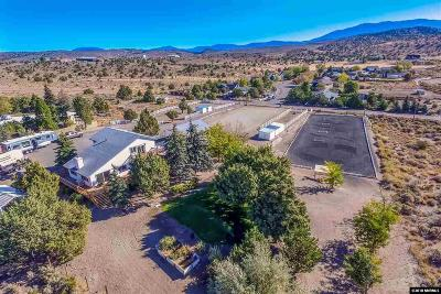 Gardnerville Single Family Home For Sale: 816 Mustang