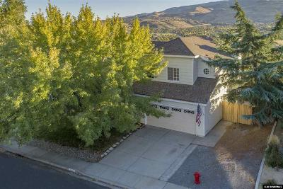 Washoe County Single Family Home For Sale: 4758 Scenic Hill Circle