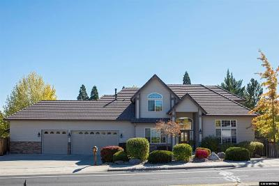 Washoe County Single Family Home For Sale: 2650 Skyline Blvd.