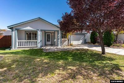 Reno, Sparks, Carson City, Gardnerville Single Family Home New: 3121 May Rose Circle