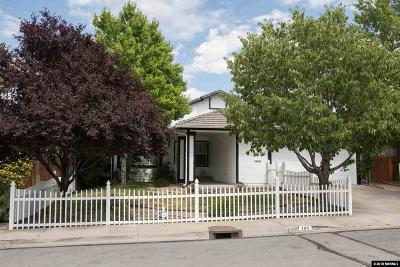 Washoe County Single Family Home New: 180 Brooktrail Drive