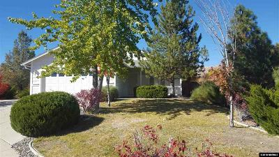 Washoe County Single Family Home New: 7145 Park Valley Ct.