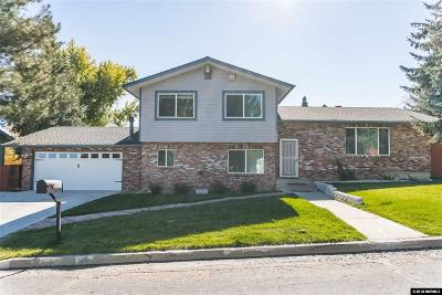Washoe County Single Family Home New: 3015 Susileen Dr.