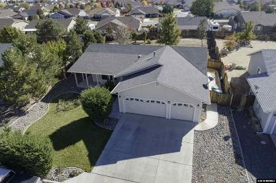 Washoe County Single Family Home New: 2342 Ruddy Way