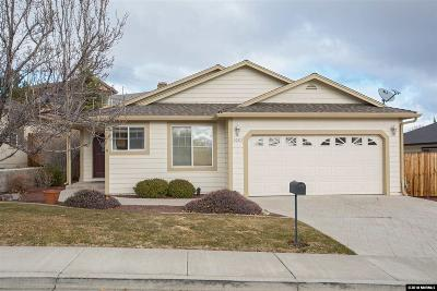 Washoe County Single Family Home New: 3005 Bryan Street