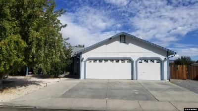Washoe County Single Family Home New: 2192 Ruddy Way