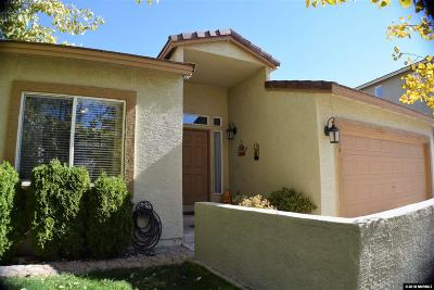 Washoe County Single Family Home New: 3260 Cityview Ter