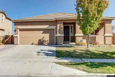 Washoe County Single Family Home New: 7172 Discovery Lane