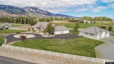 Washoe Valley Single Family Home For Sale: 7464 Brothers Ln