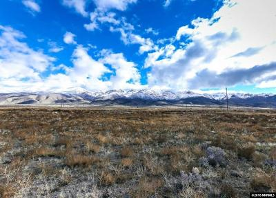 Lovelock Residential Lots & Land For Sale: 11655 Mammoth Pool Trail
