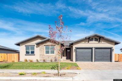 Minden NV Single Family Home For Sale: $610,500