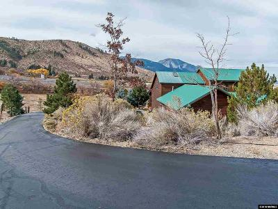 Washoe County Single Family Home For Sale: 290 Duck Hill Road