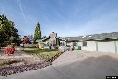 Washoe County Single Family Home For Sale: 2490 Homeland