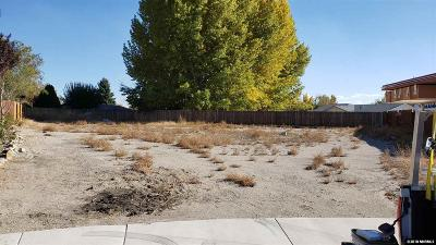 Yerington Residential Lots & Land For Sale: 312 Copper Pointe