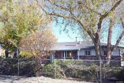 Minden NV Single Family Home For Sale: $469,500