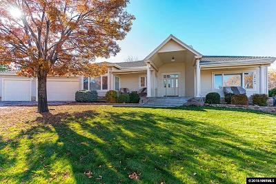 Reno, Sparks, Carson City, Gardnerville Single Family Home For Sale: 14145 Saddlebow Drive
