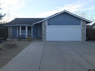 Gardnerville Single Family Home For Sale: 666 Joette Drive