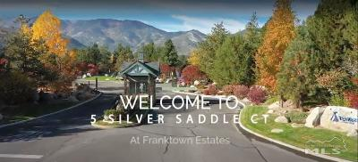 Washoe Valley Single Family Home For Sale: 5 Silver Saddle