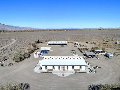 Yerington Single Family Home For Sale: 15 Pine Grove Rd