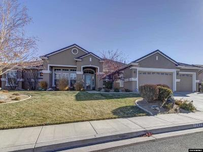 Washoe County Single Family Home New: 7424 Desert Plains