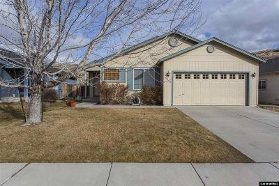 Washoe County Single Family Home New: 4630 S Desert Brush
