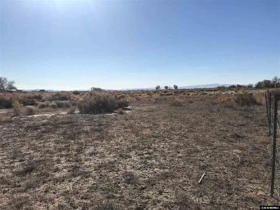 Fallon Residential Lots & Land For Sale: 2 Austin Highway