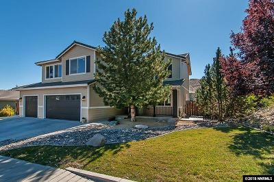 Washoe County Single Family Home For Sale: 4085 Twin Falls