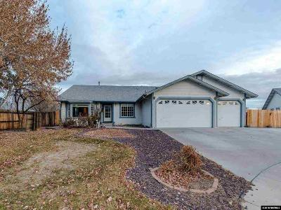 Sparks Single Family Home For Sale: 2178 Ivory Gull Ct