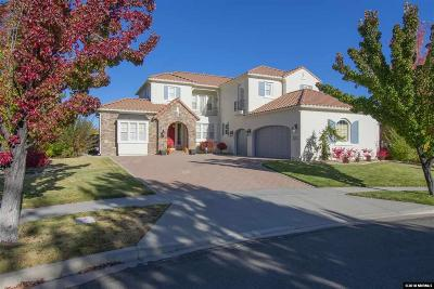 Washoe County Single Family Home For Sale: 8265 Willow Ranch Trail