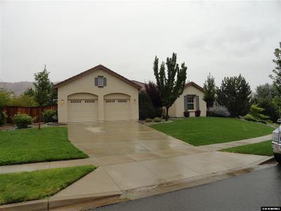 Washoe County Single Family Home For Sale: 8165 Willow Ranch Trail