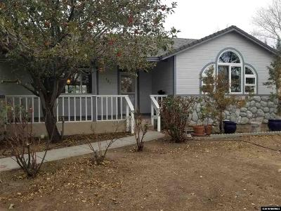 Fernley Single Family Home For Sale: 321 Nader
