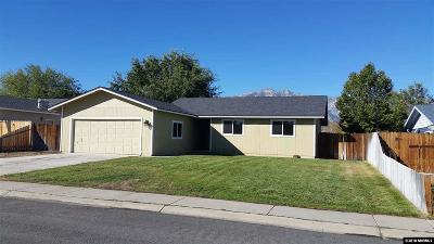 Gardnerville Single Family Home Price Raised: 753 Hornet Drive