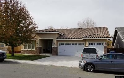 Fernley Single Family Home For Sale: 524 Grey Eagle
