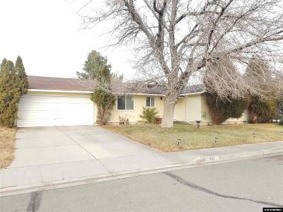 Carson City Single Family Home For Sale: 408 Sandstone Drive