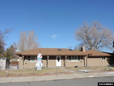 Carson City Single Family Home For Sale: 506 Pat Lane