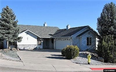 Carson City Single Family Home For Sale: 3573 Haystack Drive
