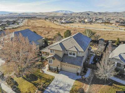 Washoe County Single Family Home For Sale: 2947 Silverton Way
