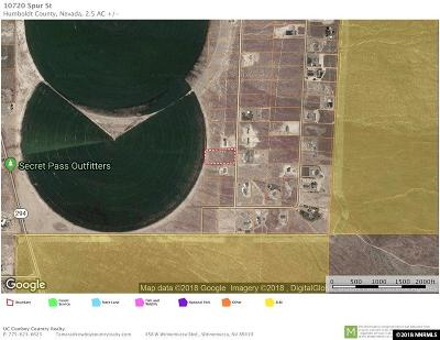 Winnemucca Residential Lots & Land For Sale: 10720 Spur St.