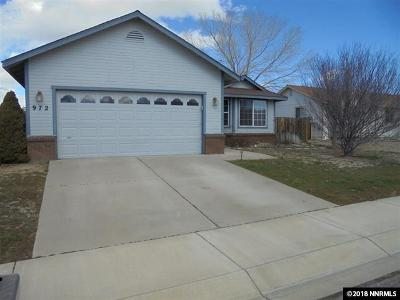 Carson City Single Family Home For Sale: 972 Sunview