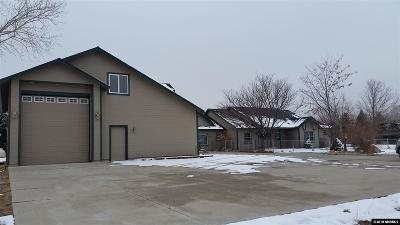 Reno, Sparks, Carson City, Gardnerville Single Family Home New: 299 Mottsville Lane