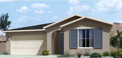 Reno Single Family Home New: 7495 Souverain Lane