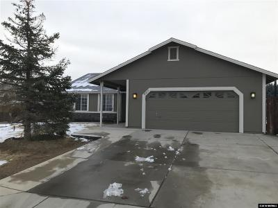 Washoe County Single Family Home New: 457 Meagan Dr.