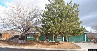 Washoe County Single Family Home New: 9430 Benedict Drive
