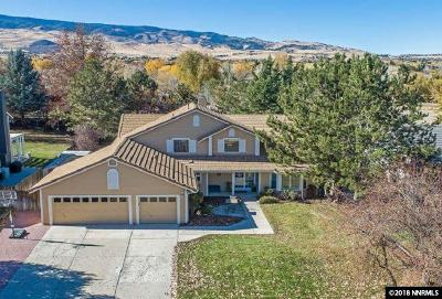 Washoe County Single Family Home For Sale: 8055 Meadow Vista Dr