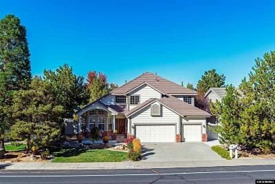 Washoe County Single Family Home New: 4707 Village Green