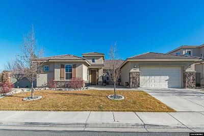 Reno Single Family Home New: 10040 Goler Wash Court
